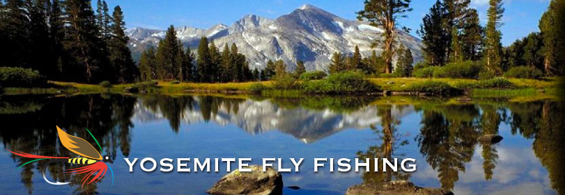 Overview yosemite fly fishing guide flyfishing high for Fly fishing yosemite
